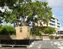 Muñiz presenta hoy Memoria y Cuenta de la gestión revolucionaria en Piar