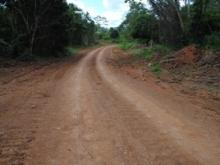 Vialidad agrícola del sector La Masusa de El Buey.