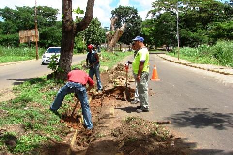 Construcción de Brocales ha generado más de 10 empleos directos