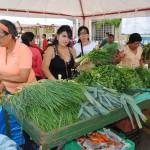 El marcado campesino ofreció verdura, hortalizas y frutas gracias la Dirección de Desarrollo Endógeno de la Alcaldía de Piar.