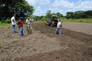 Alcaldía realiza mecanización agrícola a más de 20 parcelas